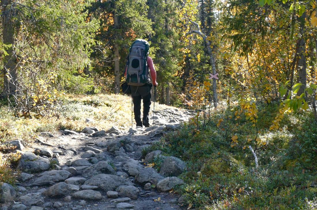 The Kungsleden Trail towards Kvikkjokk
