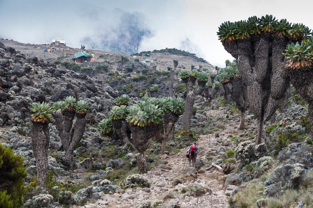 Route to Barranco Huts