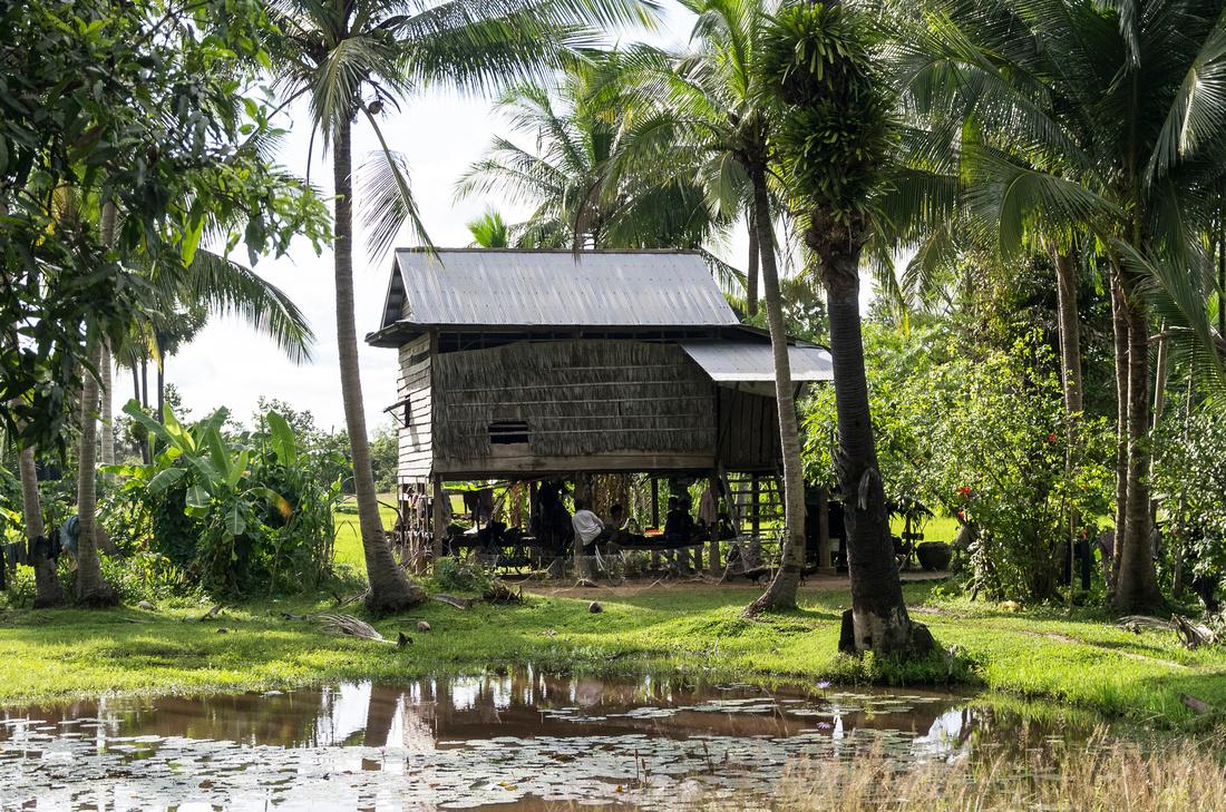 Cambodian house on stilts