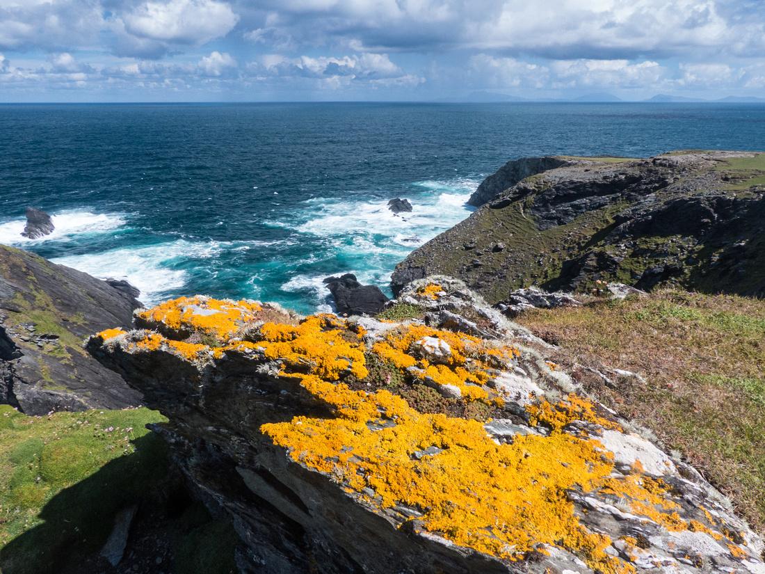 Wild Atlantic Colours