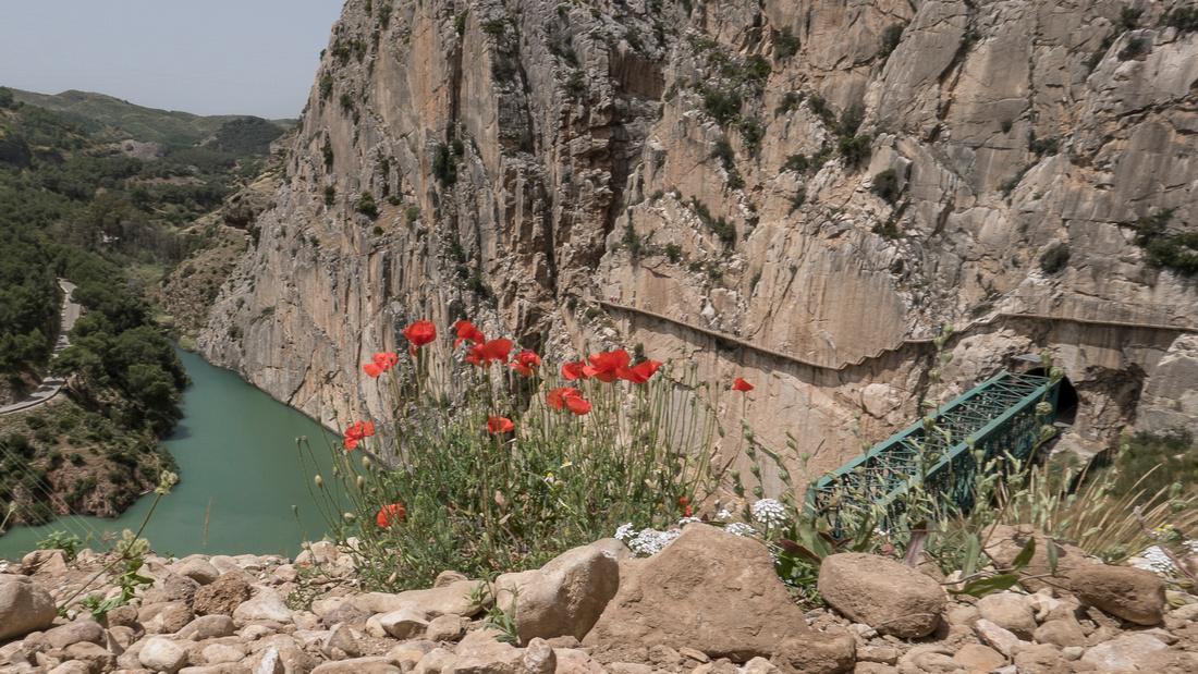 Railway tunnel near El Chorro