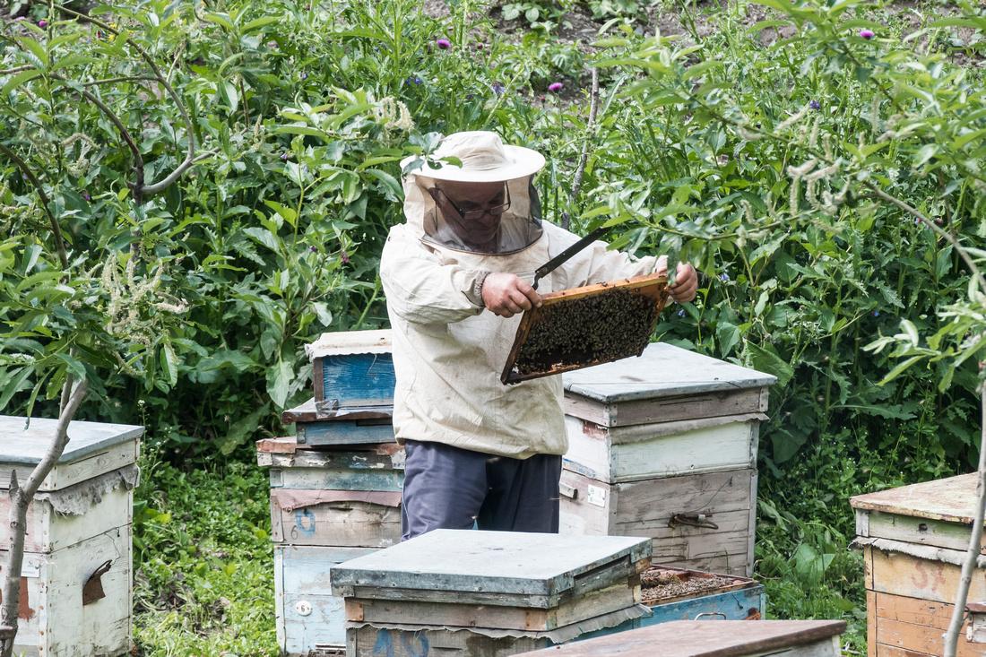Beekeeper in Jutta