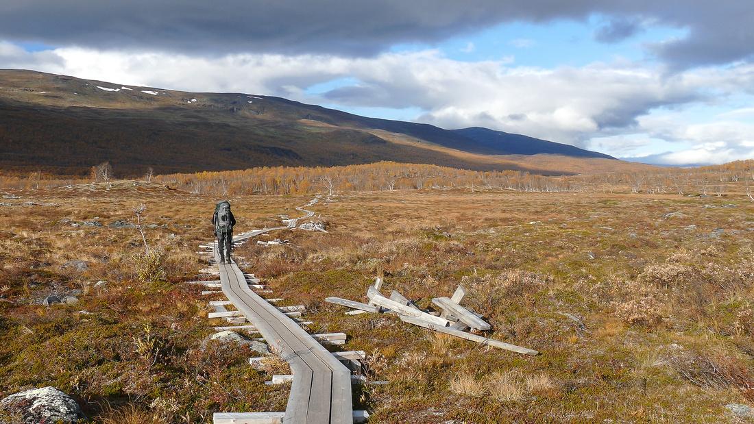 Marchland in the Abisko National Park, Sweden