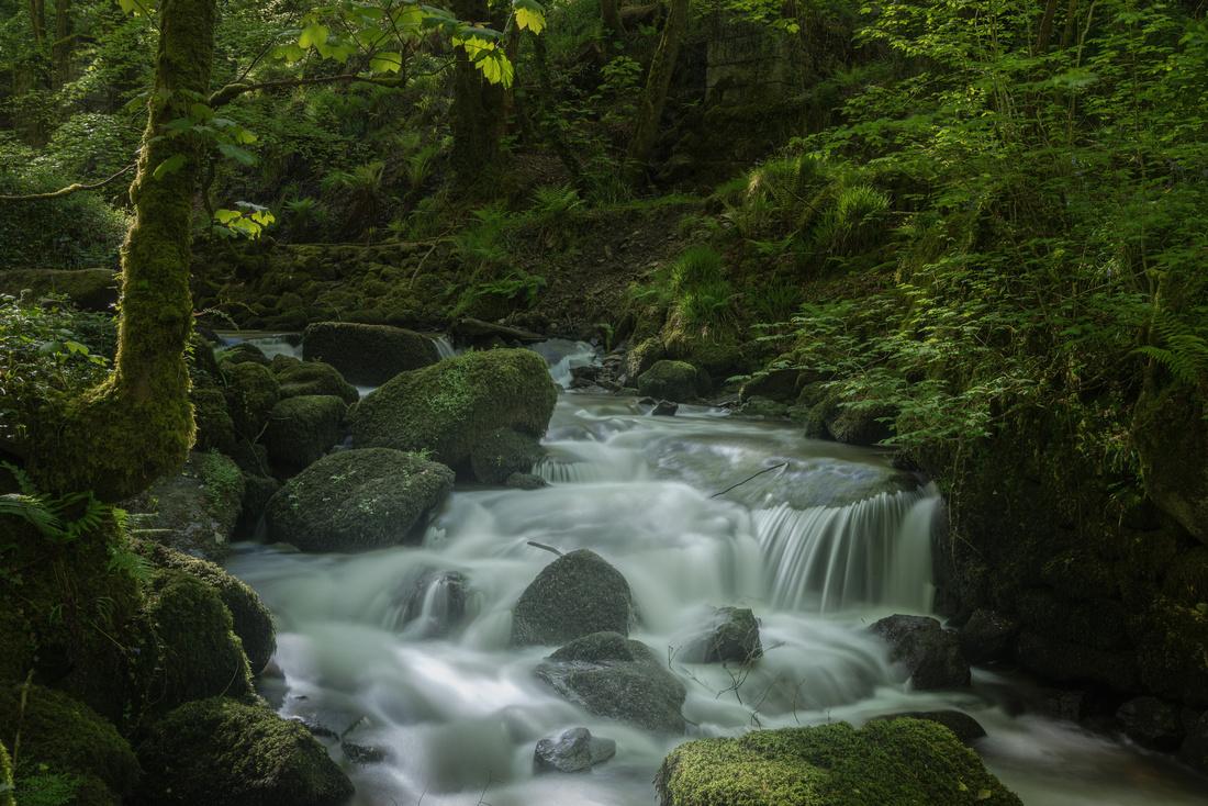 River Kennall