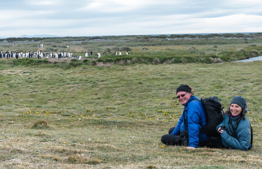 Bird watching at the Parque Pingüino Rey, Tierra del Fuego, Chile