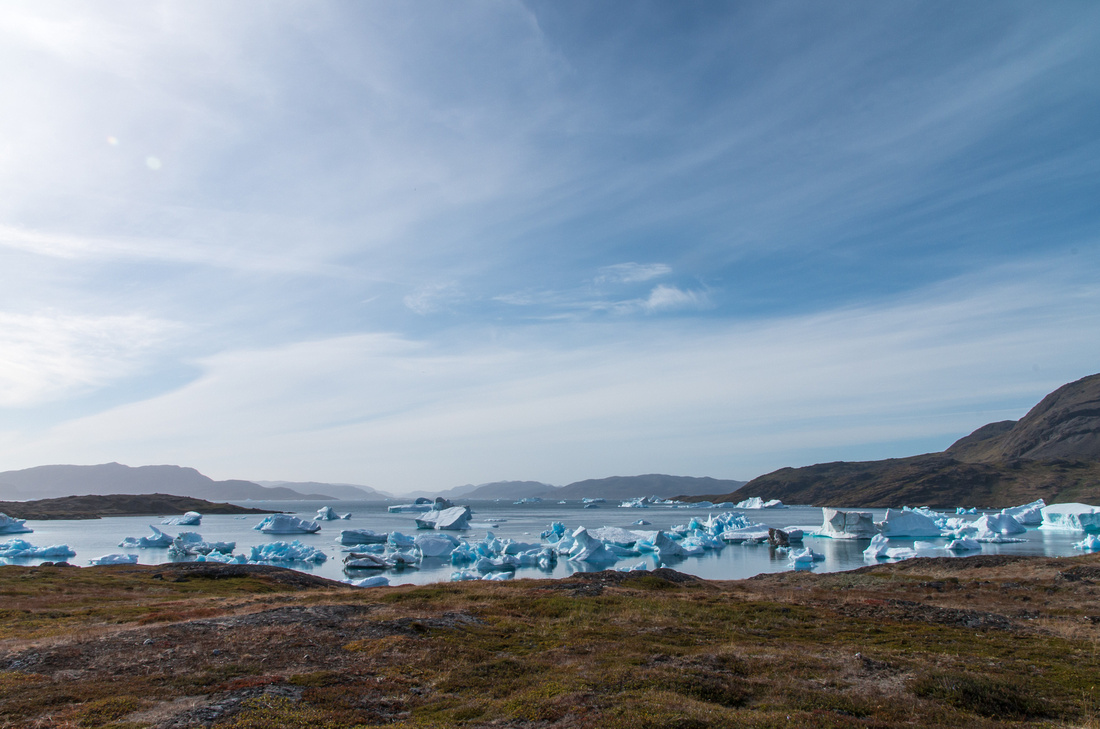 Icebergs in Narsaq Bay