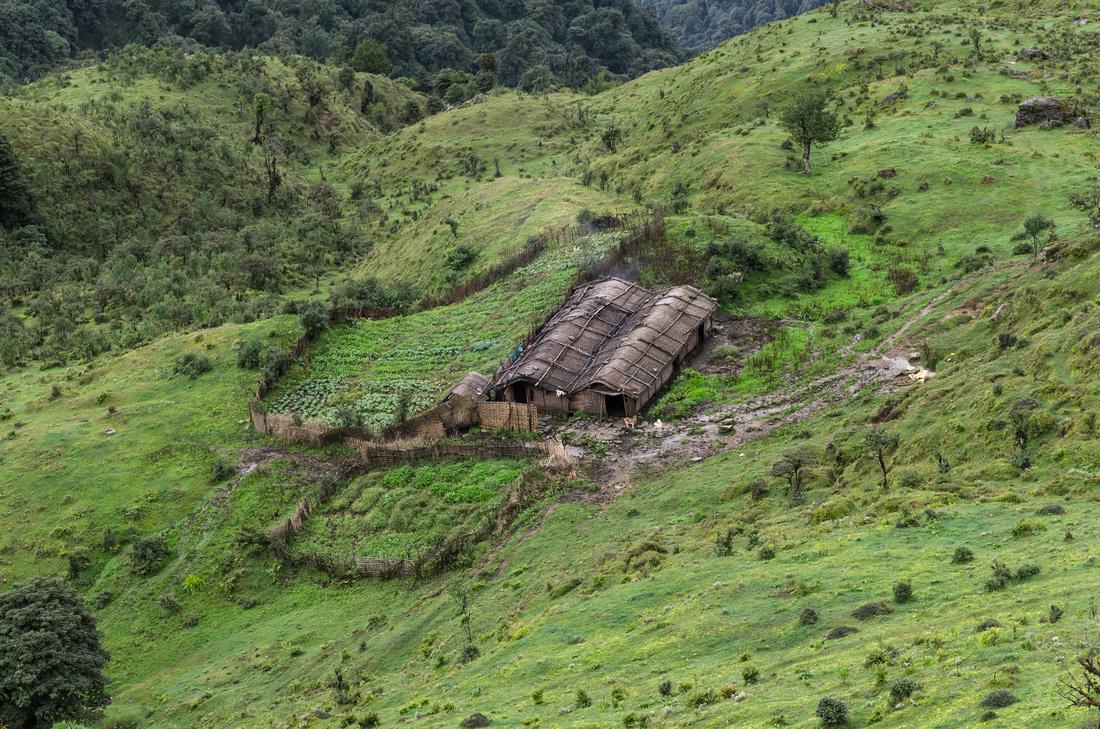 Nepali farm