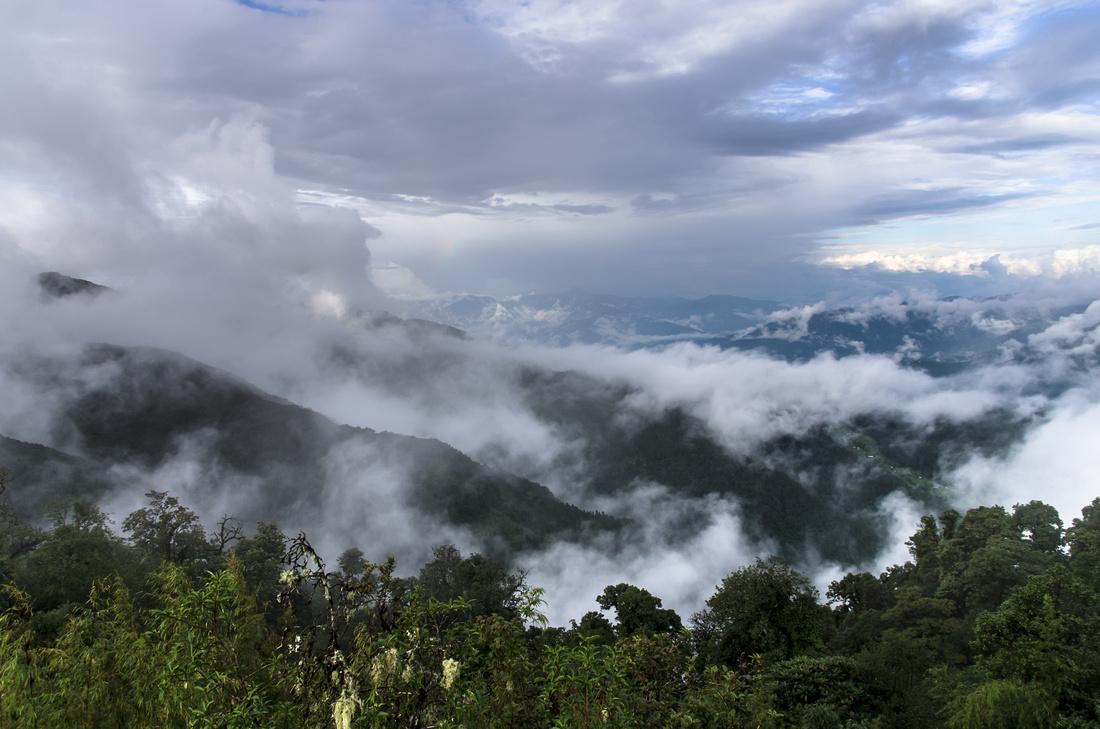 Monsoon mist in the Eastern Himalaya