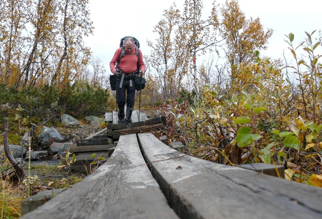 Boardwalk on the Kungsleden Trail